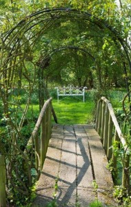 The double rose arch bridge at Ulting Wick garden